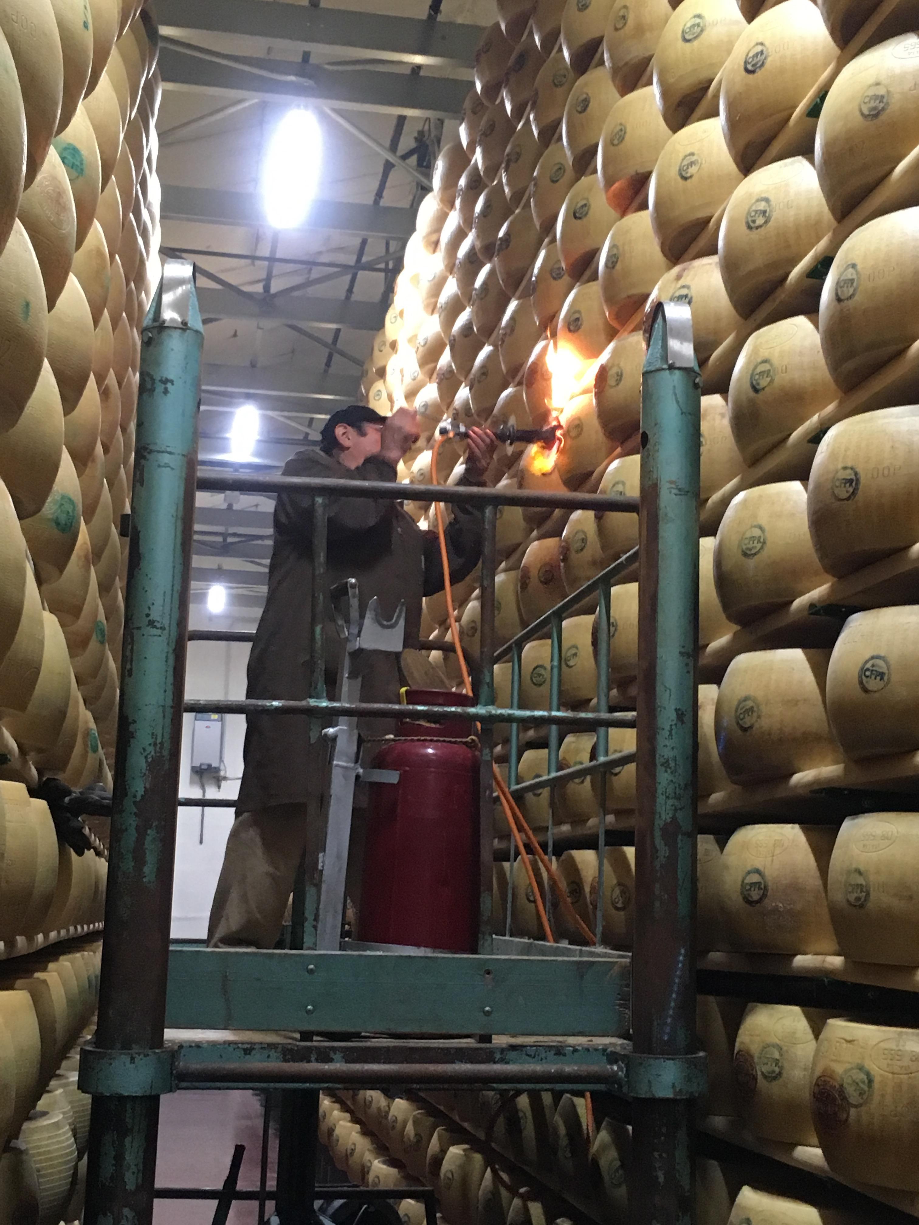 Parmesan ost och Maserati bilar hos Panini