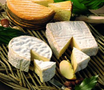 Besök hos en ostmakare i Normandie