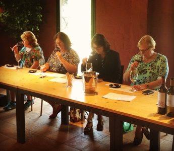 Vinbesök hos Oller del Mas