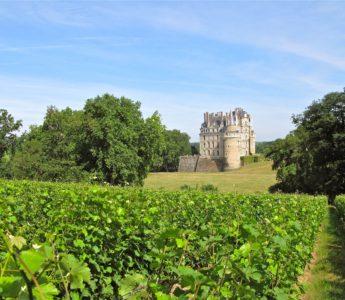 Vinodling Loire