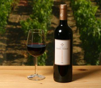 Cykla bland franska vinfält